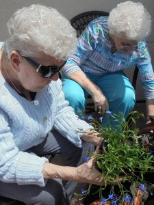 Planting Flowers, Willows of Arbor Lakes Senior Living, Maple Grove, MN
