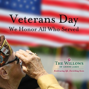 happy veterans day 2016, willows of arbor lakes senior living, maple grove, mn